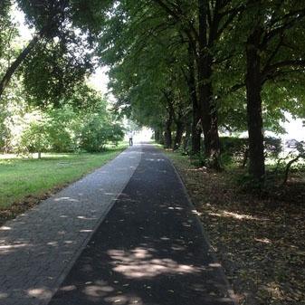 Восени робитимуть велодоріжки в Рясному